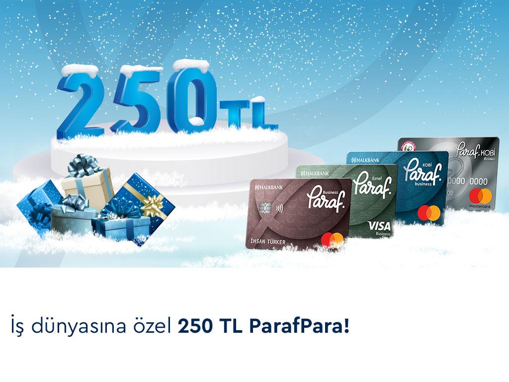 İş Dünyasına Özel 250 TL ParafPara Fırsatı!